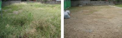 左が草刈前の草ボウボウ状態で、右が草刈して綺麗になった状態です。