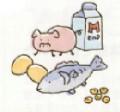 蛋白質(プロテイン)